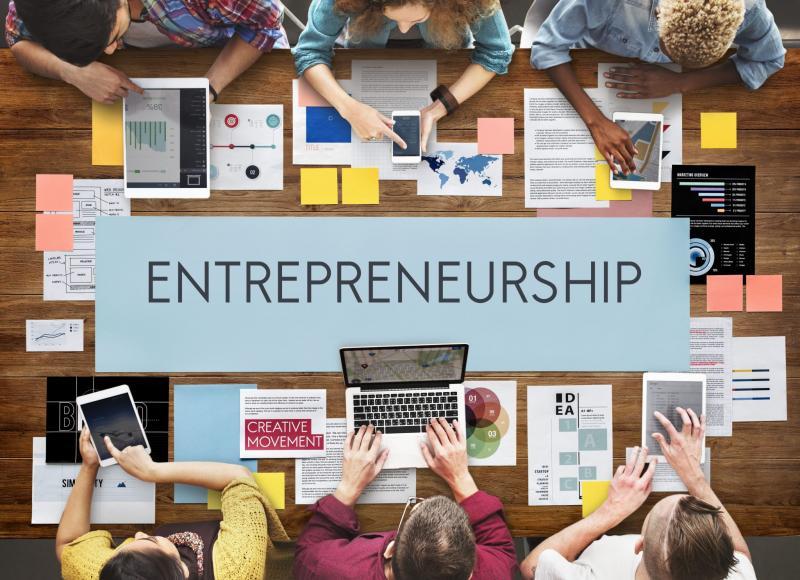 Δίκτυο Επιχειρηματικότητας, Δομές υποστήριξης ΜΜΕ, Συγκριτική αξιολόγηση, Συμβουλευτική υποστήριξη, Δικτύωση