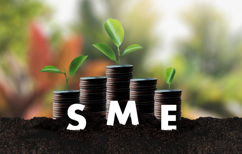 SBA Fact Sheet, Διεθνές οικονομικό περιβάλλον, Πολύ μικρές επιχειρήσεις, Επιχειρηματικότητα, Διεθνοποίηση, Καινοτομία, Χρηματοδότηση